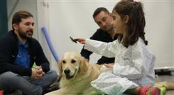 especializacion online intervención asistida por animales en terapia ocupacional