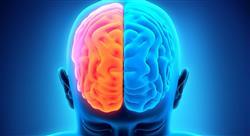 estudiar neuroliderazgo y neuropolítica en psicología