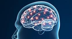 especializacion online neuromarketing y neuroeconomía en psicología