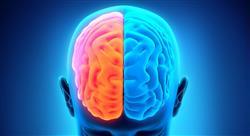 estudiar neuromarketing y neuroeconomía en psicología