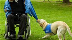curso intervencion asistida caninos