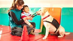 diplomado intervencion asistida caninos