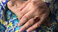 formacion procesos cognitivos en el envejecimiento normal y patológico