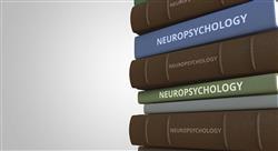 especializacion investigación en neuropsicología