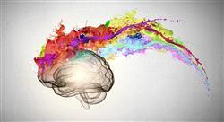 experto universitario investigación en neuropsicología