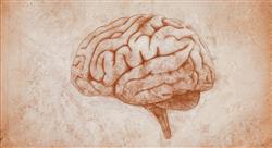 posgrado neuropsicología clínica
