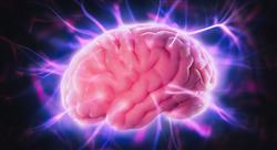 experto neurologia conducta Tech Universidad