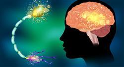 estudiar neuroanatomia Tech Universidad