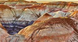 formacion formación disciplinar de la biología y geología