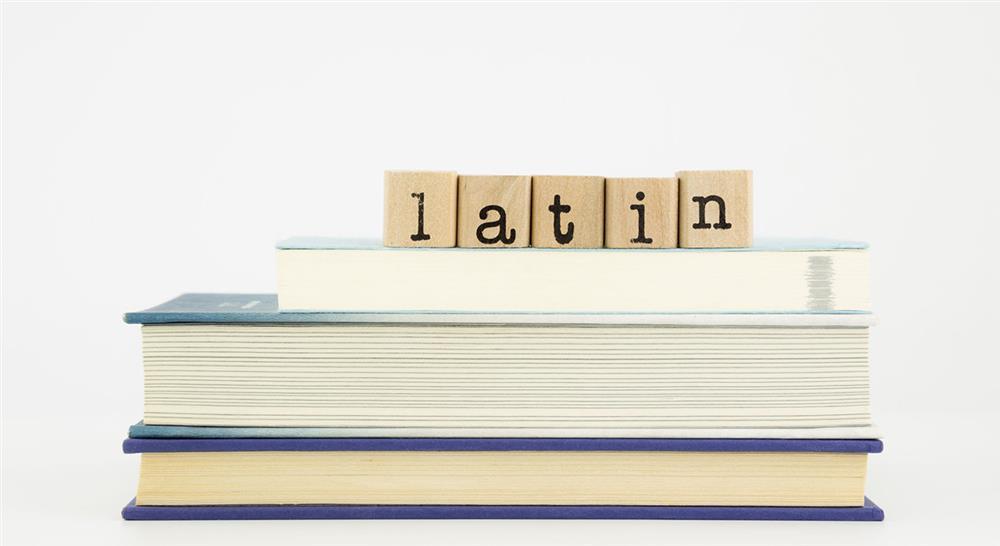 curso diseño curricular de latín y lengua clásica en educación secundaria