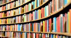 especializacion online metodología de la investigación educativa