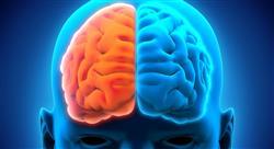 especializacion neurología de la conducta para docentes
