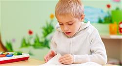 diplomado sedes neurológicas del comportamiento para docentes