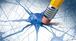 curso bioquimica cerebral docentes Tech Universidad