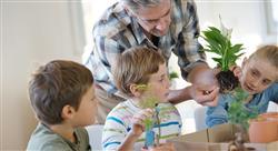 curso convivencia social y familiar en primaria