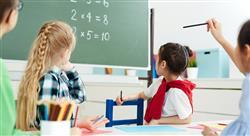 curso didáctica y conocimiento de las matemáticas en educación primaria
