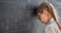 posgrado didáctica y conocimiento de las matemáticas en educación primaria