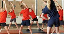 curso didáctica de la educación física y el deporte en educación primaria