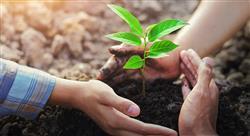 posgrado conocimiento de las ciencias de la naturaleza en educación primaria