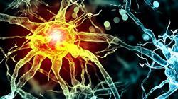 posgrado neurociencias aplicadas