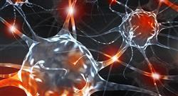 curso neuroeconomía