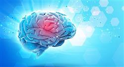 curso neuroeducación