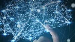 formacion neuroliderazgo