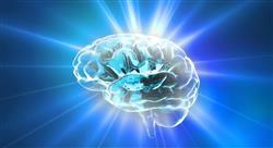 curso neurolingüística