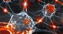 diplomado neurolingüística