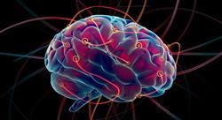 posgrado neurolingüística