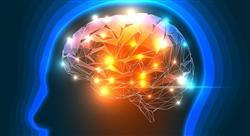 diplomado neuropolítica