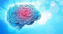 curso neuropsicología para docentes
