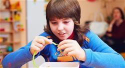 curso trastornos del neurodesarrollo y discapacidad intelectual para docentes