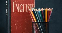formacion bilingüismo y alfabetización en infantil y primaria