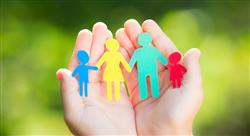 diplomado el sistema de protección de menores