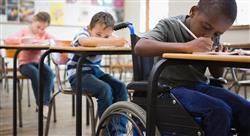 diplomado preparación del profesorado para la escuela inclusiva