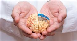 diplomado neurorrehabilitación y tratamiento logopédico