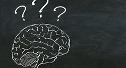 maestria neuropsicologia clinica docen