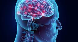estudiar neuroanatomia docentes Tech Universidad