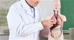 formacion didáctica de procesos sanitarios