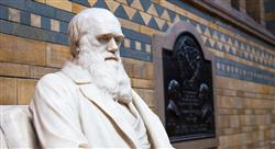 posgrado historia de la filosofía contemporánea