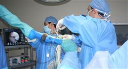 estudiar manejo anestésico clínico de especies mayores