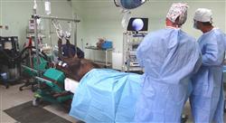 curso fluidoterapia en el periodo anestésico en especies mayores