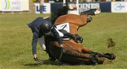 posgrado lesiones deportivas y manejo en el caballo