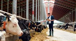 especializacion bienestar animal en granja
