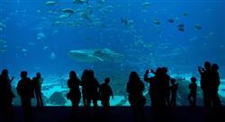 curso bienestar animal piscicultura Tech Universidad