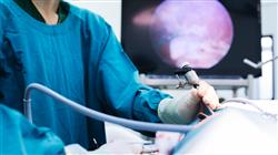 maestria online cirugia veterinaria