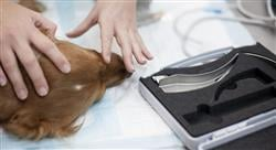 curso farmacologia veterinaria Tech Universidad