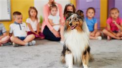 posgrado master terapias asistidas animales