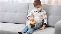 estudiar programas intervencion asistida animales